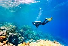 Dekompresní nemoc – noční můra potápěčů?